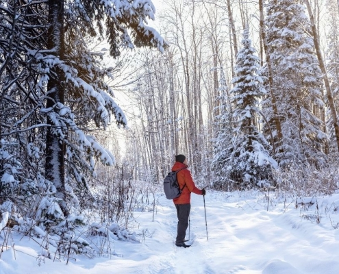 Ways To Boost Your Mental Health in the Winter