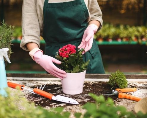 The Most Popular Stress-Reducing Hobbies